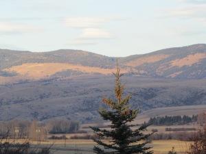 Montana 2013 096